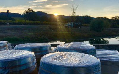 A Winemaker's Story – Steve Reynolds